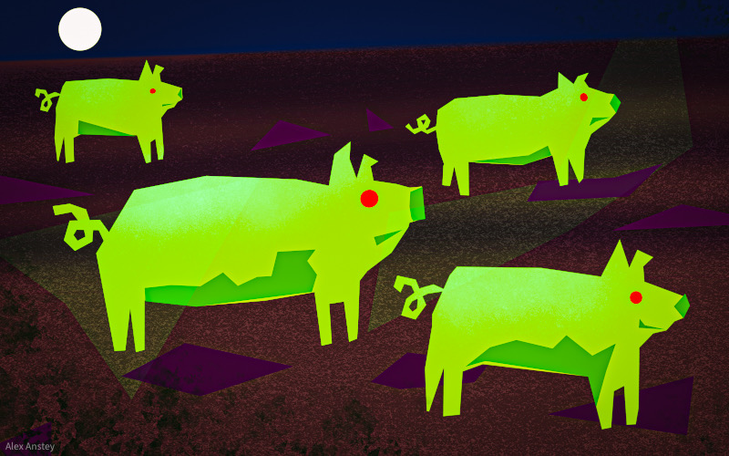 Illustration of zombie pigs